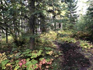 """Photo 17: DL 1599 W 16 Highway in Prince George: Lafreniere Land for sale in """"LAFRENIERE"""" (PG City South (Zone 74))  : MLS®# R2508129"""