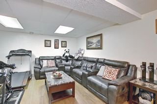 Photo 23: 31 COVENTRY Lane NE in Calgary: Coventry Hills Detached for sale : MLS®# A1116508