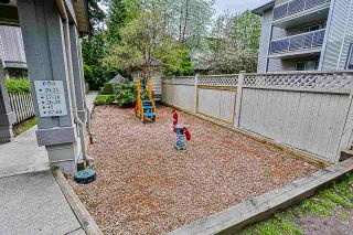 Photo 24: 37 7088 17TH Avenue in Burnaby: Edmonds BE Townhouse for sale (Burnaby East)  : MLS®# R2456963