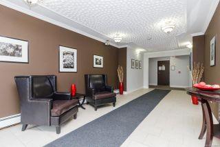 Photo 19: 123 1025 Inverness Rd in Saanich: SE Quadra Condo for sale (Saanich East)  : MLS®# 856607
