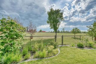 Photo 43: 59 CRANWELL Close SE in Calgary: Cranston Detached for sale : MLS®# A1019826