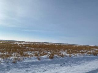 Photo 4: 26008 TWP  RD 543: Rural Sturgeon County Rural Land/Vacant Lot for sale : MLS®# E4227179