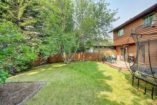 Photo 34: 172 Edendale Way NW in Calgary: Edgemont Detached for sale : MLS®# A1133694
