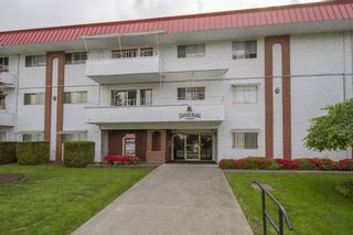 Photo 19: 307-12096 222nd in Maple Ridge: West Central Condo for sale : MLS®# R2065694