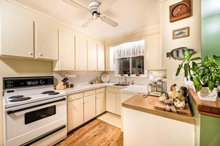 Photo 11: 315 Palmer Avenue in Richmond Hill: Harding House (Bungalow) for sale : MLS®# N3438481