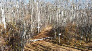Photo 4: 15 54023 RGE RD 280: Rural Parkland County Rural Land/Vacant Lot for sale : MLS®# E4266505