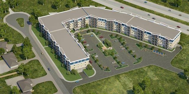 Main Photo: 313 1505 Molson Street in Winnipeg: Oakwood Estates Condominium for sale (3H)  : MLS®# 202121264