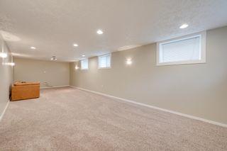Photo 35: 8116 96 Avenue in Edmonton: Zone 18 House for sale : MLS®# E4253261