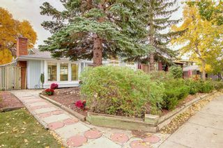 Photo 45: 248 Midlake Boulevard SE in Calgary: Midnapore Detached for sale : MLS®# A1144224