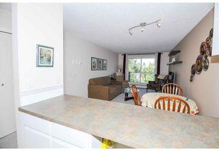 Photo 15: 305 110 20 Avenue NE in Calgary: Tuxedo Park Apartment for sale : MLS®# A1096695