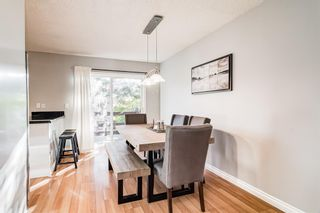 Photo 17: 508 Mckinnon Drive NE in Calgary: Mayland Heights Detached for sale : MLS®# A1154496