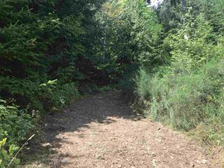 Photo 23: Lot 1 MARINE Drive in Granthams Landing: Gibsons & Area Land for sale (Sunshine Coast)  : MLS®# R2535798