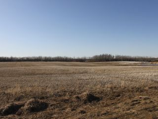 Photo 3: RGE RD 175 TWP RD 500: Rural Beaver County Rural Land/Vacant Lot for sale : MLS®# E4233179