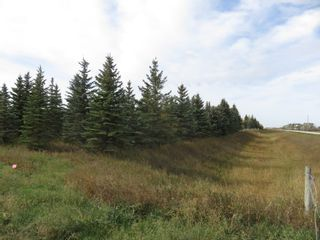 Photo 20: 0 Centreline Road: RM Springfield Vacant Land for sale (R04)  : MLS®# 202103923