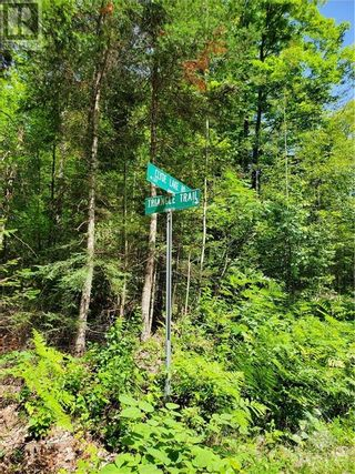 Photo 17: 2600 CLYDE LAKE ROAD in Lanark: Vacant Land for sale : MLS®# 1253879