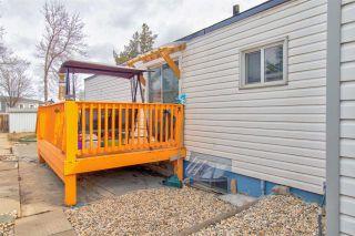 Photo 22: 253 LEE RIDGE Road in Edmonton: Zone 29 House for sale : MLS®# E4237736