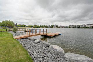 Photo 46: 9012 16 Avenue in Edmonton: Zone 53 House for sale : MLS®# E4255809