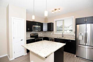 Photo 11: 4110 ALLAN Crescent in Edmonton: Zone 56 House for sale : MLS®# E4249253