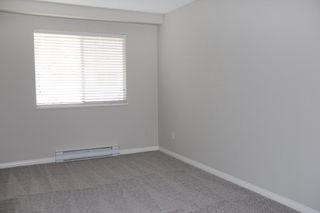 """Photo 13: 223 12101 80 Avenue in Surrey: Queen Mary Park Surrey Condo for sale in """"Surrey Town Manor"""" : MLS®# R2177547"""