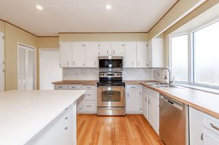 Photo 21: 12908 66 Avenue in Edmonton: Zone 15 House for sale : MLS®# E4239987