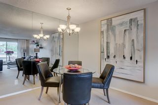 Photo 9: 208 540 18 Avenue SW in Calgary: Cliff Bungalow Apartment for sale : MLS®# A1124113