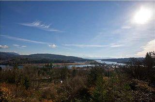 Photo 40: 9950 284 Street in Maple Ridge: Whonnock House for sale : MLS®# R2602610