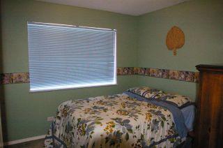 Photo 10: 24820 118B Avenue in Maple Ridge: Websters Corners House for sale : MLS®# R2008324