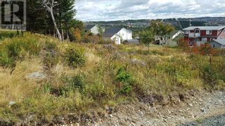 Photo 6: 8 & 10 Robs Road in Paradise: Vacant Land for sale : MLS®# 1229482
