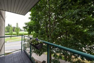 Photo 8: 302 1355 Cumberland Rd in : CV Courtenay City Condo for sale (Comox Valley)  : MLS®# 852363