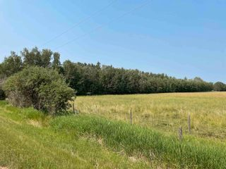 Photo 1: RGE RD 223 Twp Rd 594: Rural Thorhild County Rural Land/Vacant Lot for sale : MLS®# E4256609