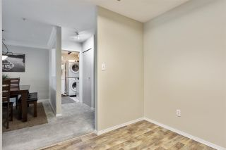 """Photo 5: 208 20881 56 Avenue in Langley: Langley City Condo for sale in """"Robert's Court"""" : MLS®# R2576787"""