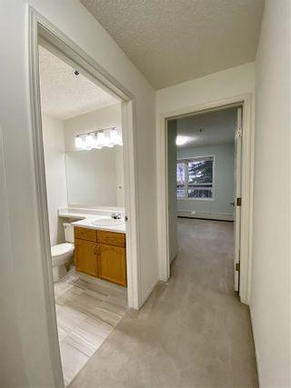 Photo 34: 203 17511 98A Avenue in Edmonton: Zone 20 Condo for sale : MLS®# E4224086