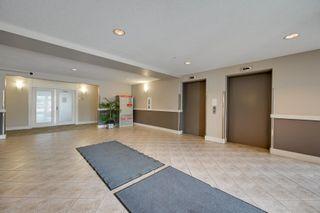 Photo 26: 217 646 MCALLISTER Loop in Edmonton: Zone 55 Condo for sale : MLS®# E4249189