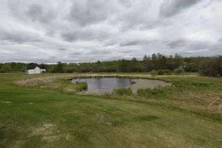 Photo 24: 241 52411 RGE RD 214: Rural Strathcona County House for sale : MLS®# E4246757