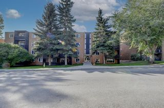Photo 22: 403 507 57 Avenue SW in Calgary: Windsor Park Apartment for sale : MLS®# A1146991