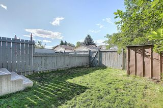 Photo 50: 18 12 TEMPLEWOOD Drive NE in Calgary: Temple Row/Townhouse for sale : MLS®# A1021832