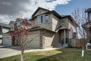 Photo 34: 180 CRANBERRY Circle SE in Calgary: Cranston Detached for sale : MLS®# C4222999