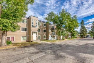 Photo 23: 309 315 HERITAGE Drive SE in Calgary: Acadia Apartment for sale : MLS®# A1029612