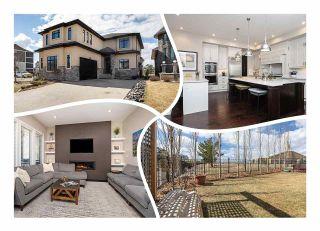 Photo 1: 17504 110 Street in Edmonton: Zone 27 House for sale : MLS®# E4242093