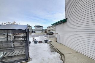 Photo 41: 813 Applewood Drive SE in Calgary: Applewood Park Detached for sale : MLS®# A1076322
