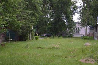 Photo 6: 2765 Maple Trail in Ramara: Brechin Property for sale : MLS®# S4318741