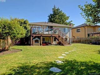 Photo 21: 1941 Carnarvon St in VICTORIA: SE Camosun House for sale (Saanich East)  : MLS®# 792937