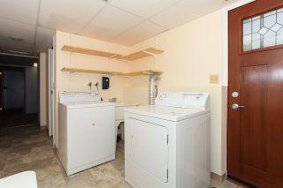 Photo 15: 21070 STONEHOUSE Avenue in Maple Ridge: Northwest Maple Ridge House for sale : MLS®# R2079384