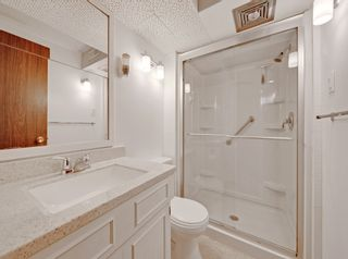 Photo 35: 4224 Vauxhall Crescent NW in Calgary: Varsity Detached for sale : MLS®# A1132269