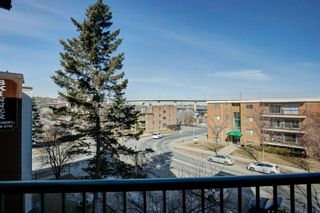 Photo 29: 303 1833 11 Avenue SW in Calgary: Sunalta Apartment for sale : MLS®# A1083577