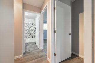 Photo 20: 1 BURLINGTON Avenue: Spruce Grove House for sale : MLS®# E4261473