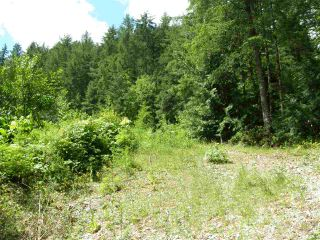 Photo 4: 23685 AMERICAN CREEK Road in Hope: Hope Center Land for sale : MLS®# R2176452
