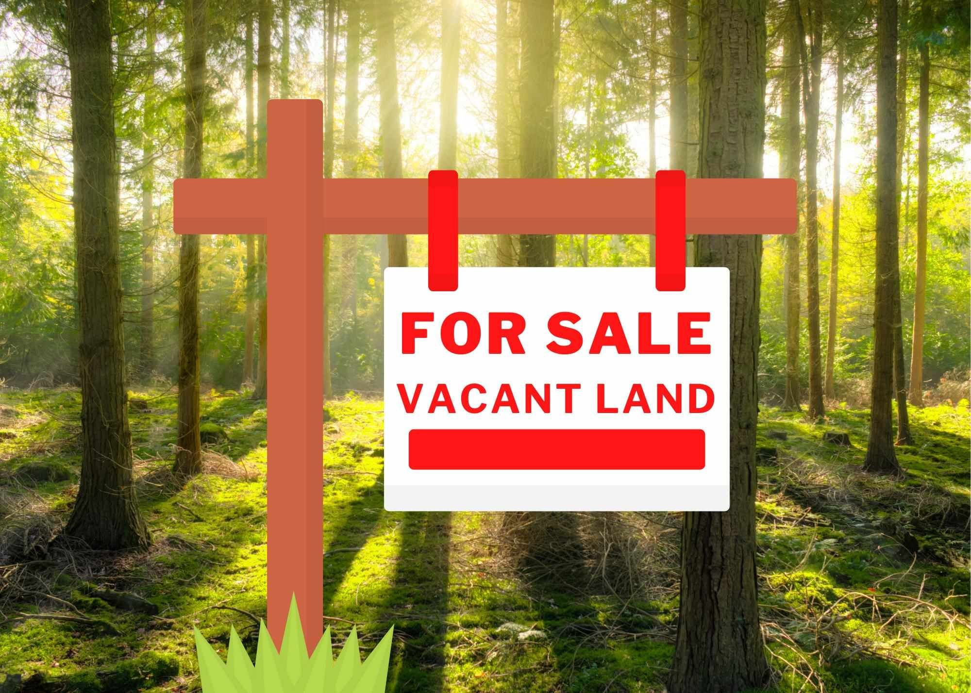 Main Photo: 239 New Cheverie Road in Burlington: 403-Hants County Vacant Land for sale (Annapolis Valley)  : MLS®# 202110100