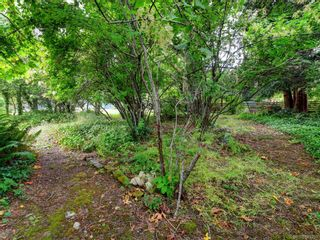 Photo 4: 4012 LOCARNO Lane in Saanich: SE Arbutus House for sale (Saanich East)  : MLS®# 843704