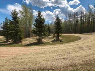 Photo 2: 85 15065 Twp Rd 470: Rural Wetaskiwin County Rural Land/Vacant Lot for sale : MLS®# E4243878
